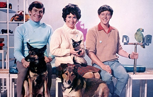 Blue Peter Dogs Names For John Noakes